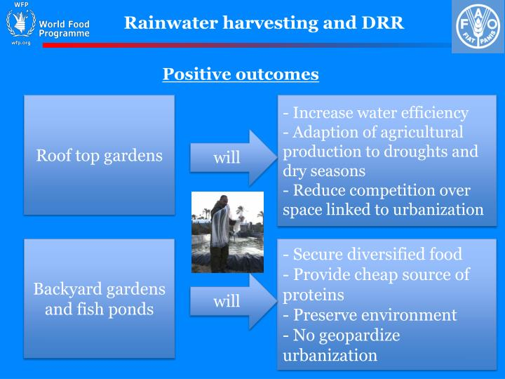Rainwater harvesting and DRR