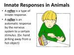 innate responses in animals1