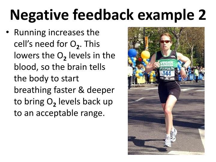 Negative feedback example 2