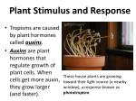 plant stimulus and response6