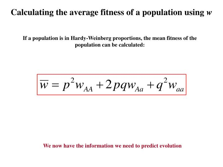 Calculating the average fitness of a population using