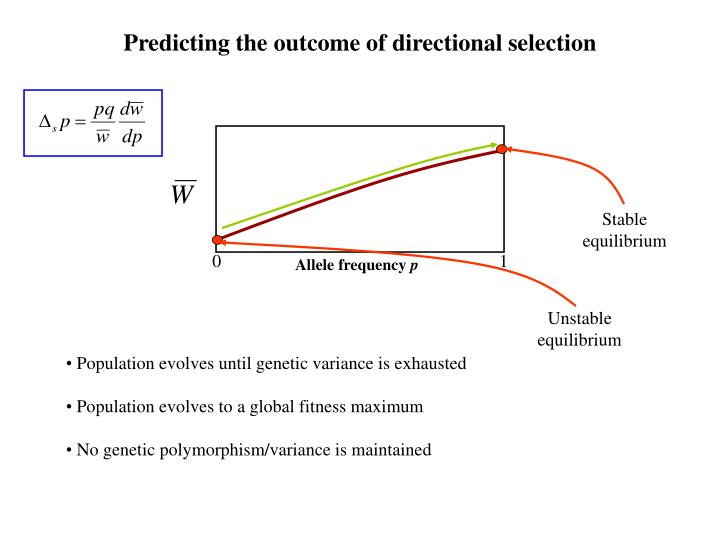 Predicting the outcome of directional selection
