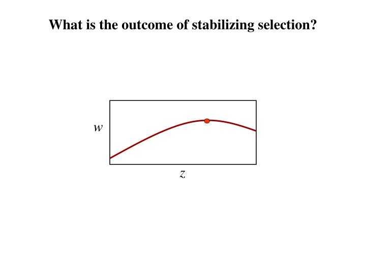 What is the outcome of stabilizing selection?