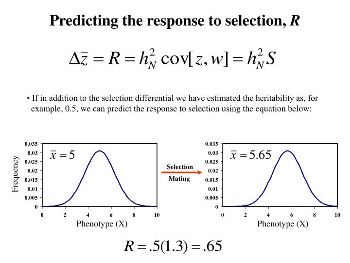 Predicting the response to selection,