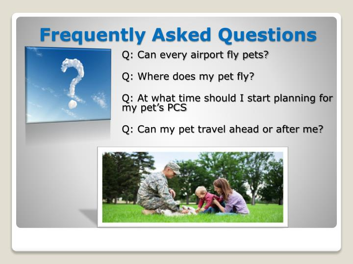 Q: Can every airport fly pets?