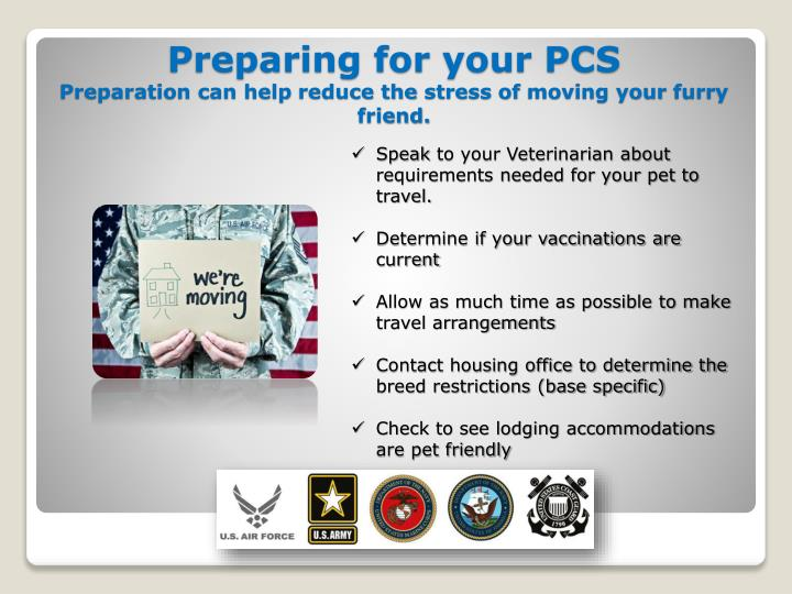 Preparing for your pcs preparation can help reduce the stress of moving your furry friend