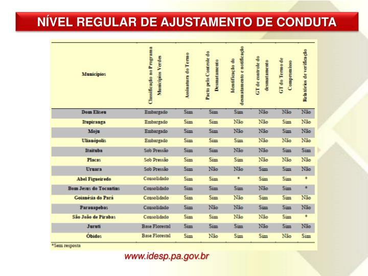 NÍVEL REGULAR DE AJUSTAMENTO DE CONDUTA