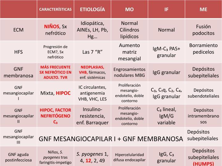 GNF MESANGIOCAPILAR I + GNF MEMBRANOSA