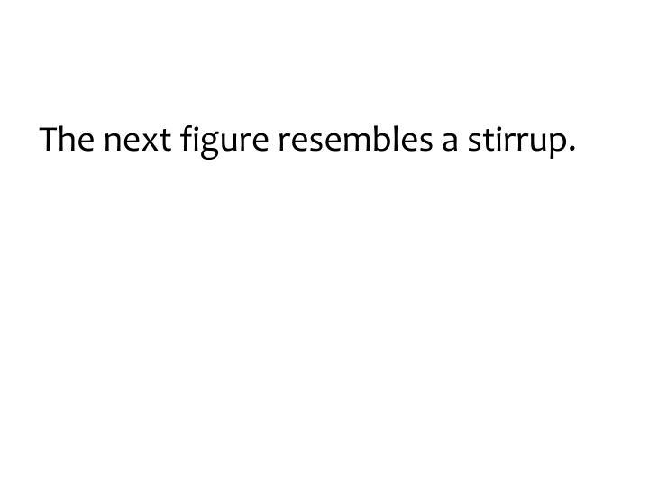 The next figure resembles a stirrup.