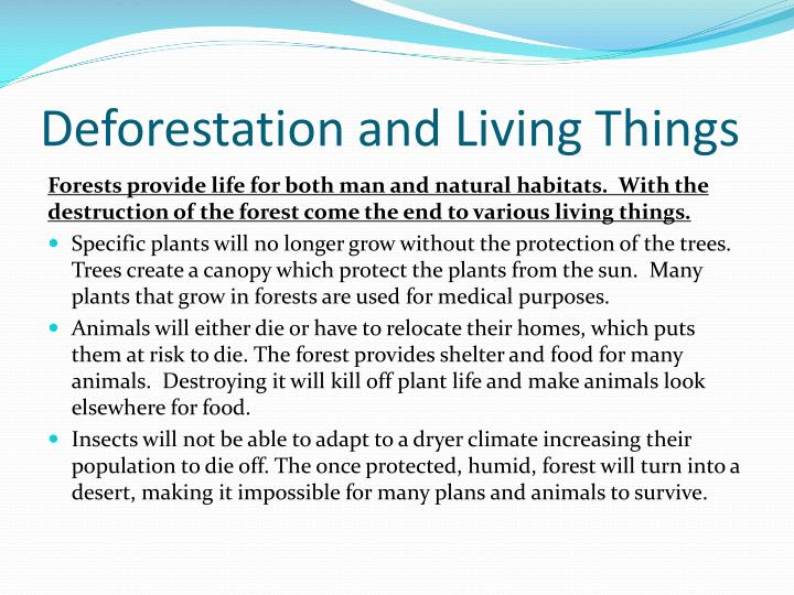 Deforestation and Living Things