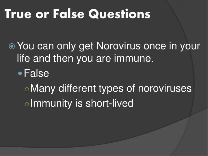 True or False Questions