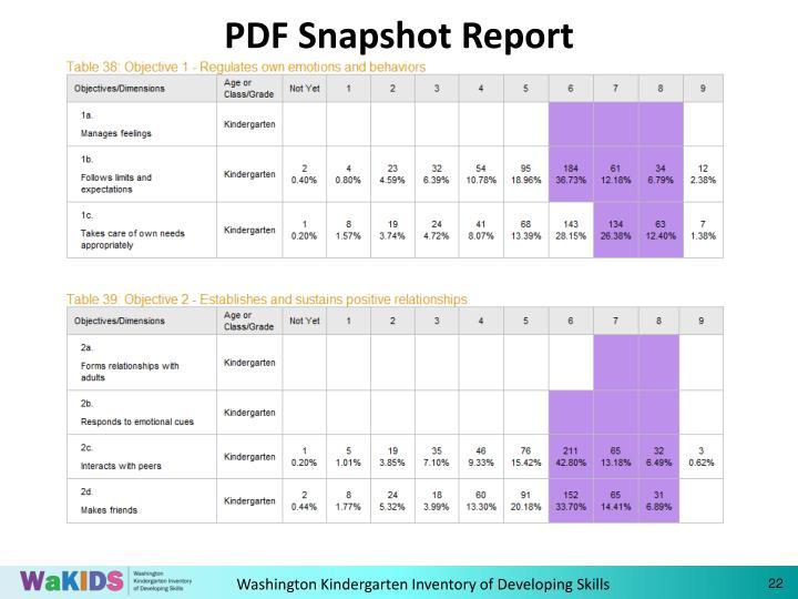 PDF Snapshot Report