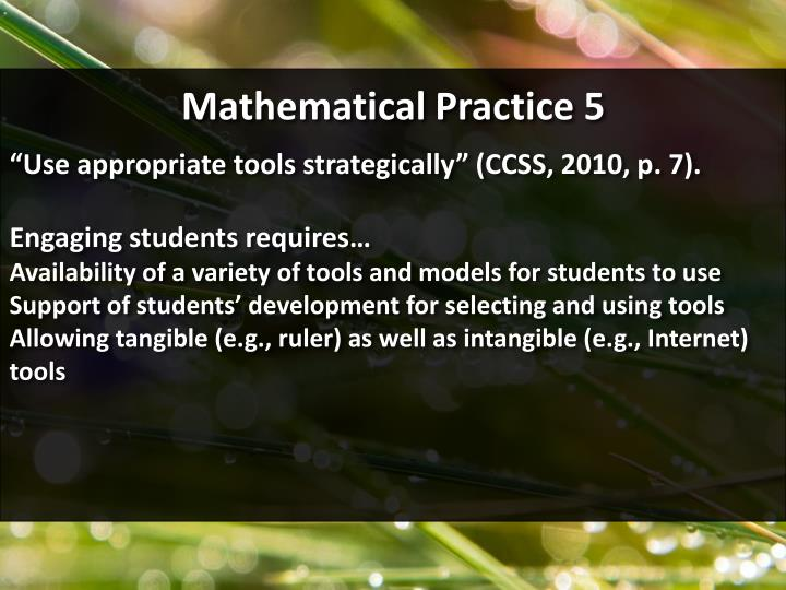 Mathematical Practice 5