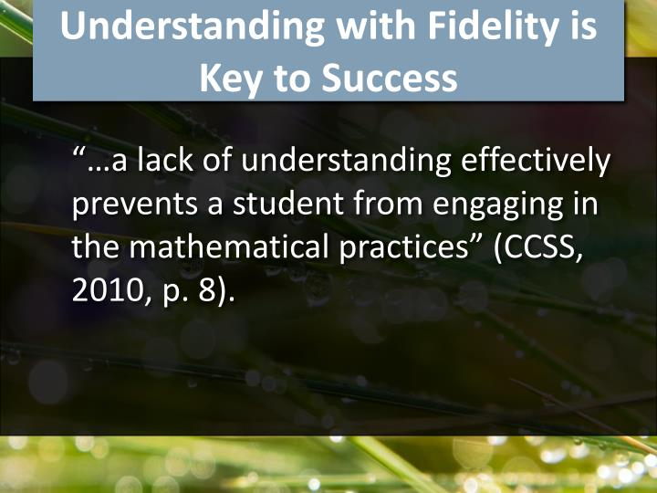 Understanding with Fidelity is Key to Success
