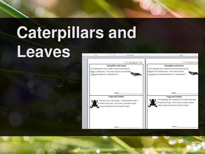 Caterpillars and Leaves