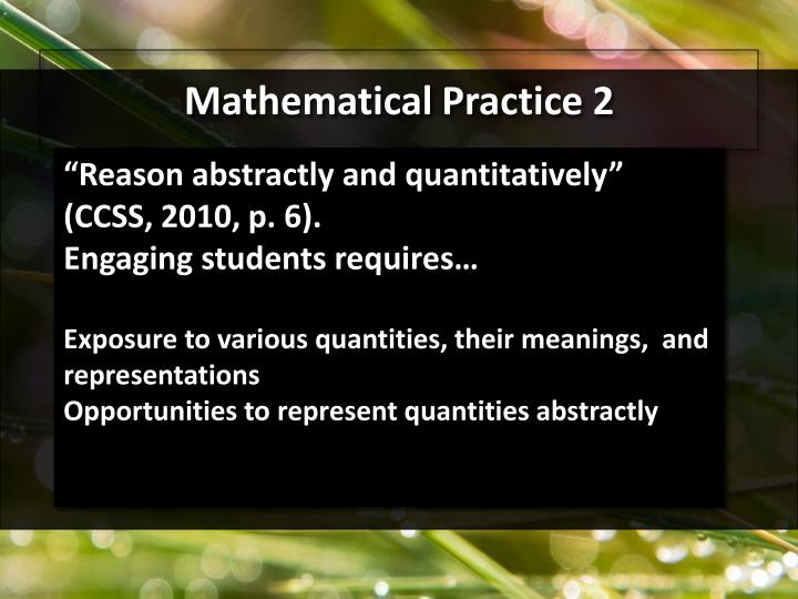 Mathematical Practice 2