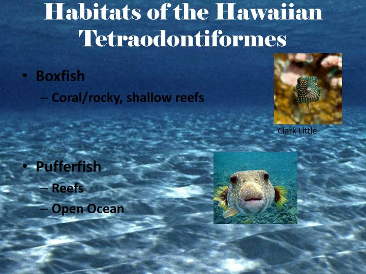 Habitats of the Hawaiian