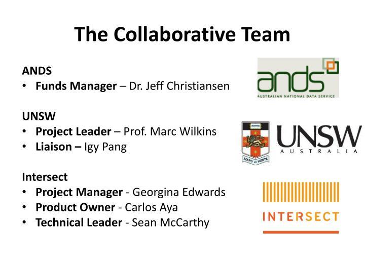 The Collaborative Team