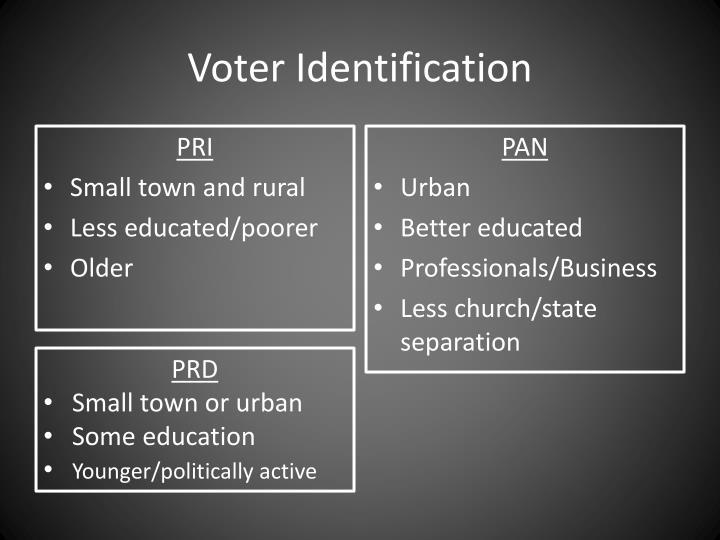 Voter Identification
