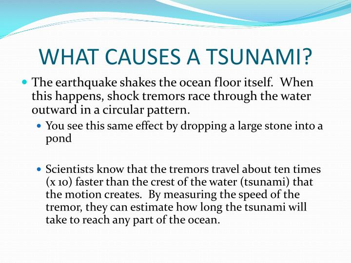 WHAT CAUSES A TSUNAMI?