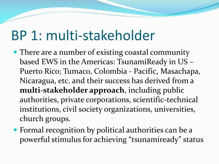 BP 1: multi-stakeholder