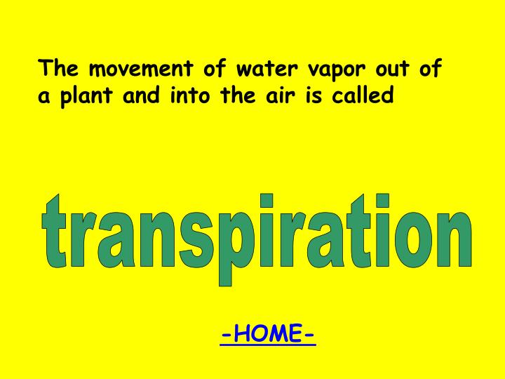 The movement of water vapor out of