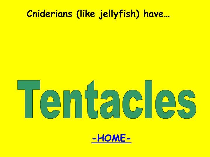 Cniderians