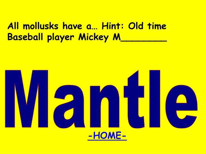 All mollusks have a… Hint: Old time Baseball player Mickey M________