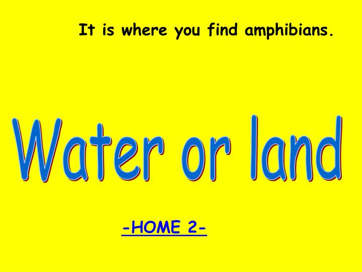 It is where you find amphibians.