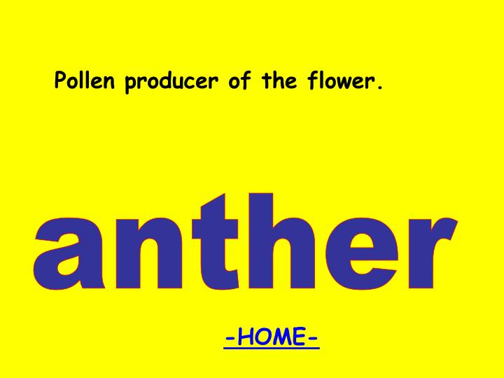 Pollen producer of the flower.