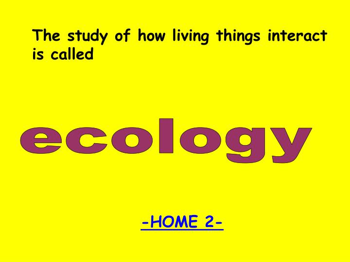 The study of how living things interact