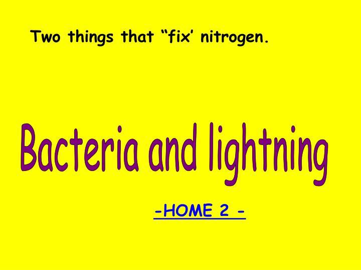 "Two things that ""fix' nitrogen."