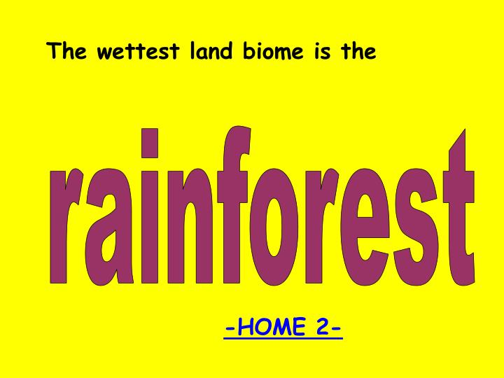 The wettest land biome is the
