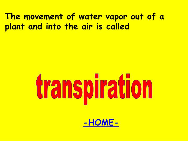 The movement of water vapor out of a