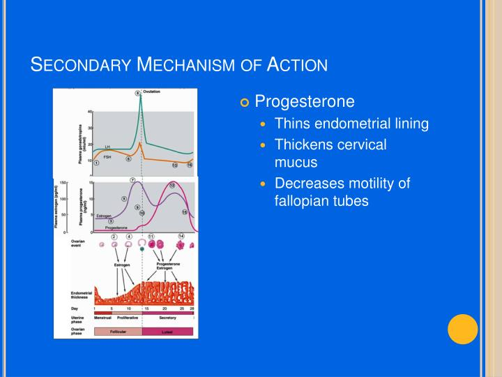 Secondary Mechanism of Action