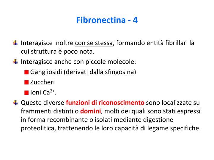 Fibronectina - 4