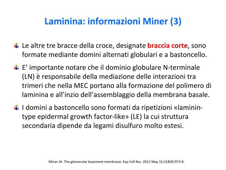 Laminina: informazioni