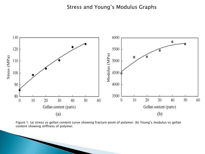 Stress and Young's Modulus Graphs