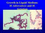 growth in liquid medium m tuberculosis and m fortuitum