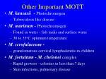 other important mott