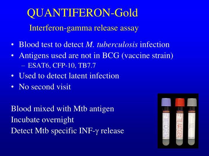 QUANTIFERON-Gold