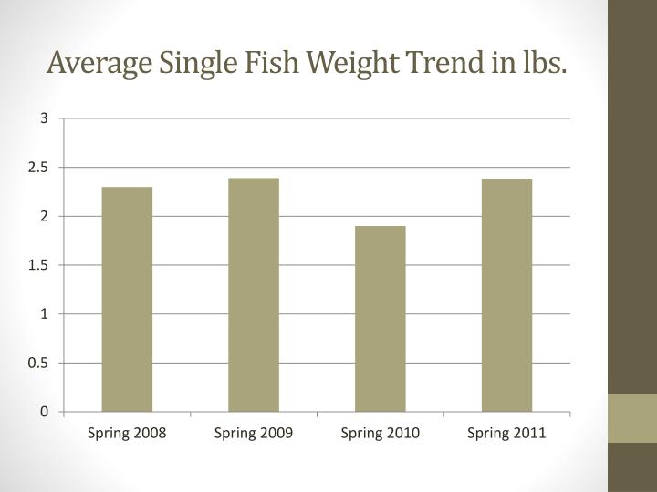 Average Single Fish Weight Trend in lbs.