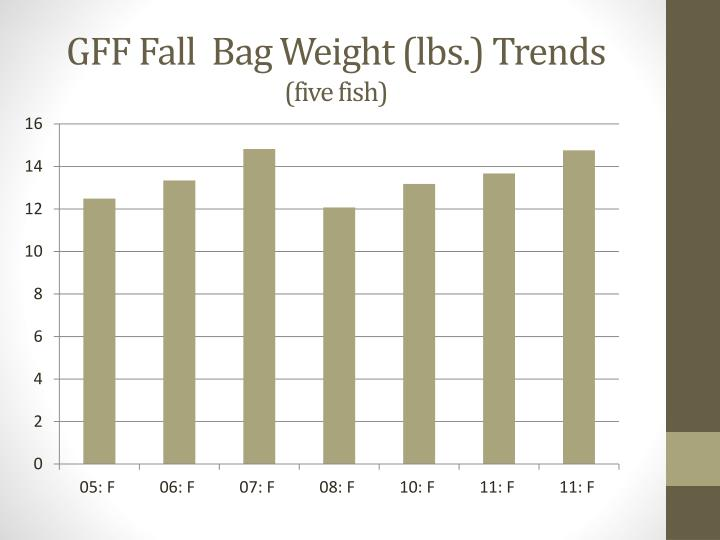 GFF Fall  Bag Weight (lbs.) Trends