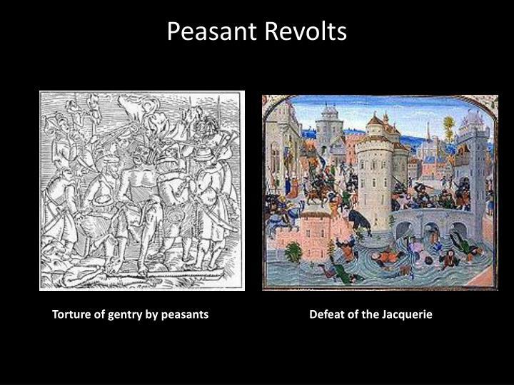 Peasant Revolts