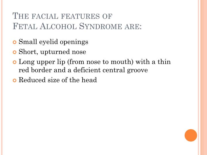 The facial features of
