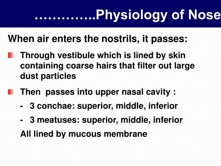 Physiology of nose1