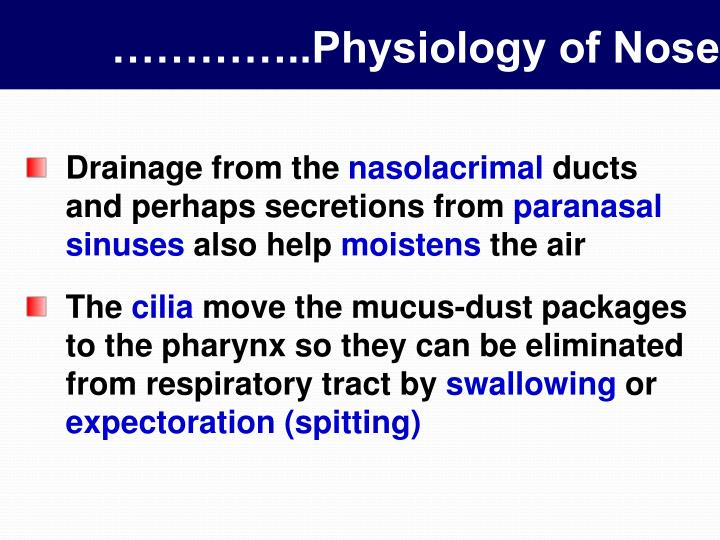 …………..Physiology of Nose
