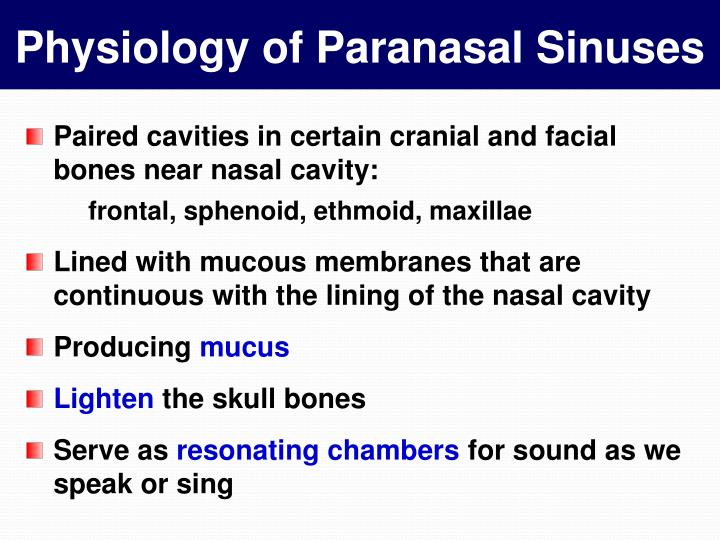 Physiology of Paranasal Sinuses