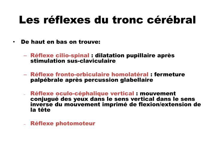 Les réflexes du tronc cérébral