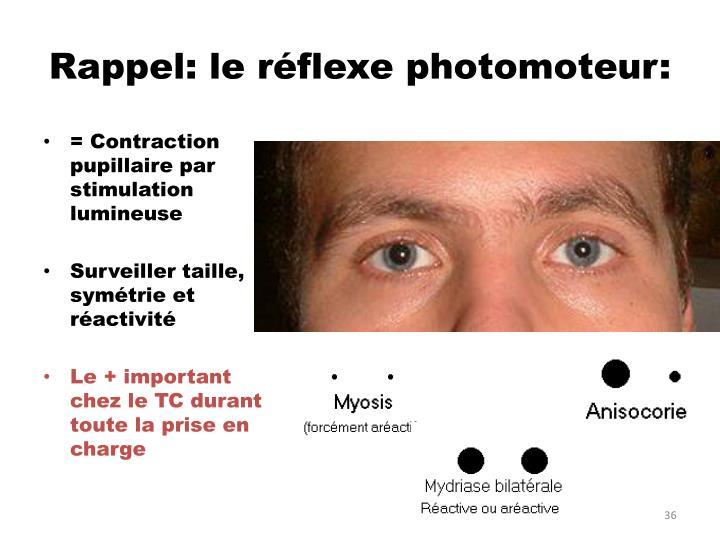 Rappel: le réflexe photomoteur:
